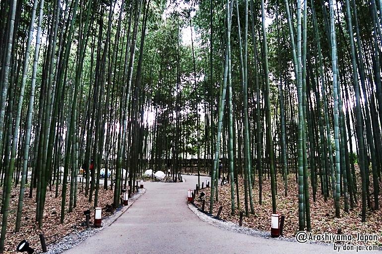 Arashiyama_010