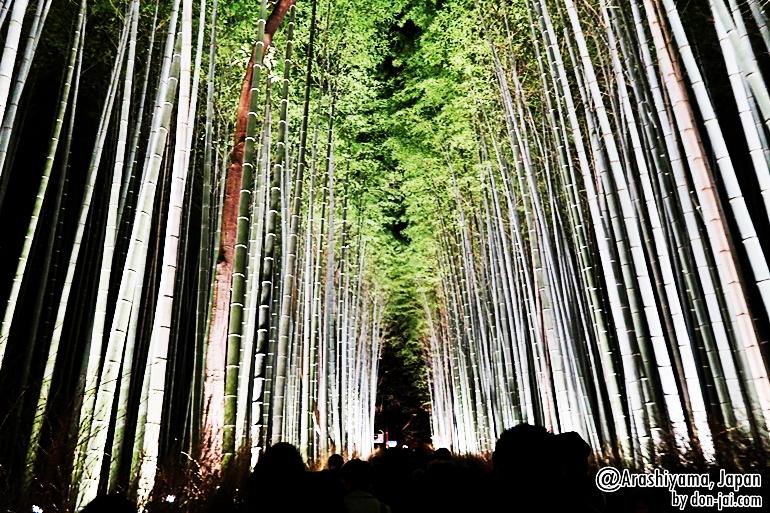 Arashiyama_015