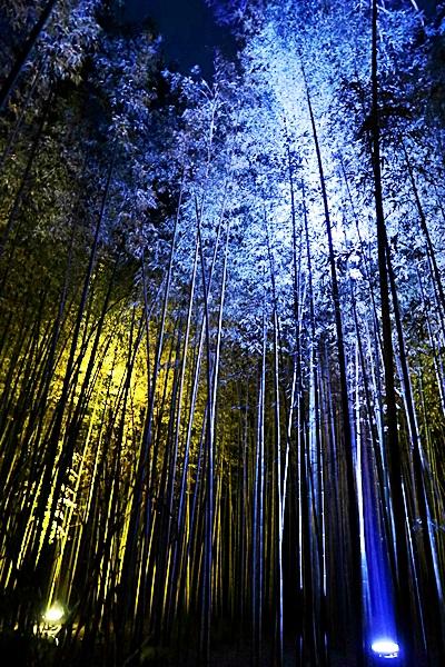 Arashiyama_036