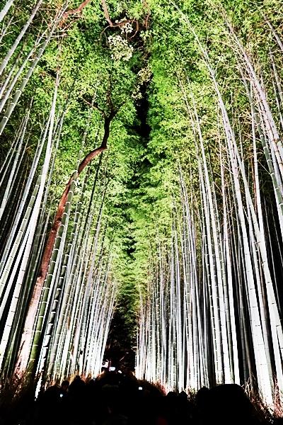 Arashiyama_041