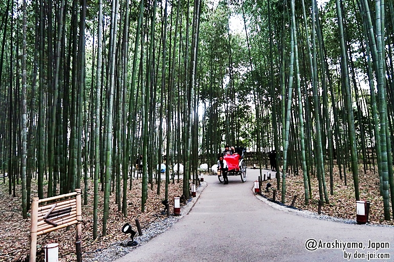 Arashiyama_046