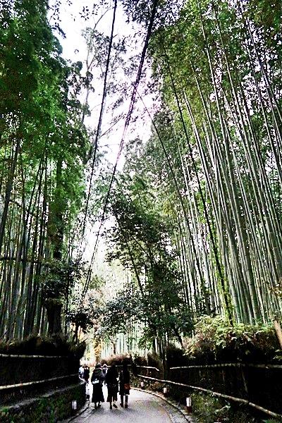 Arashiyama_049