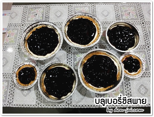 Blueberry Cheese Pie_007