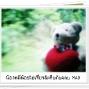 LittleBear_003.JPG