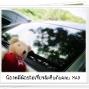 LittleBear_011.JPG