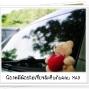 LittleBear_012.JPG