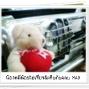 LittleBear_013.JPG