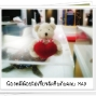 LittleBear_014.JPG