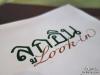 LookIn_011
