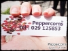 Peppercorns_021