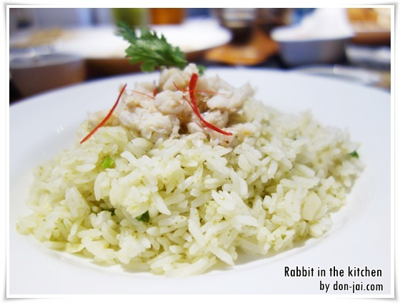 Rabbit_in_the_kitchen_023