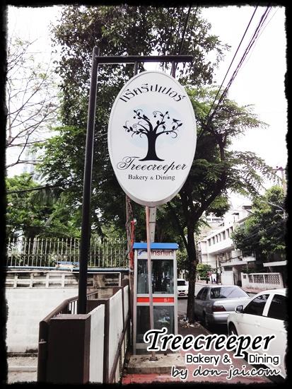 Treecreeper_Silom001