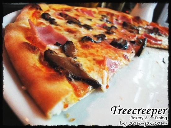Treecreeper_Silom039