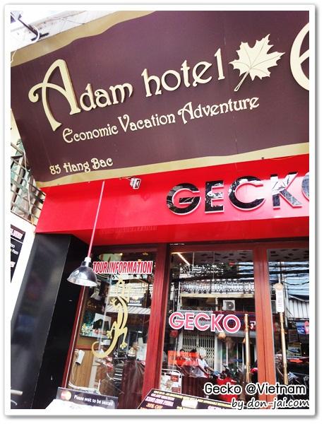 Vietnam_Gecko_001