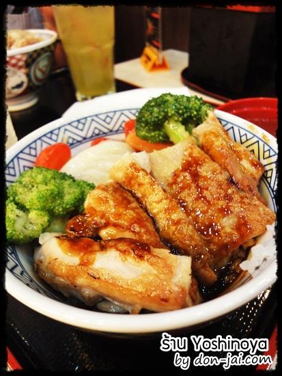 Yoshinoya_terminal21_033