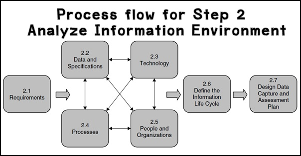 Process_flow_for_Step_2___Analyze_Information_Environment.jpg