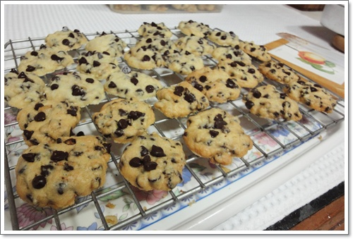 Cookies__chocolate_chip_3.JPG