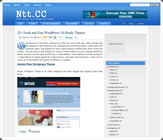 free_theme_wordpress_3_1.jpg