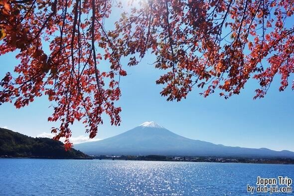 โดนใจไปญี่ปุ่น >> Day4 TOKYO - LAKE KAWAGUCHIKO - MT.FuJI - Sunnide Resort