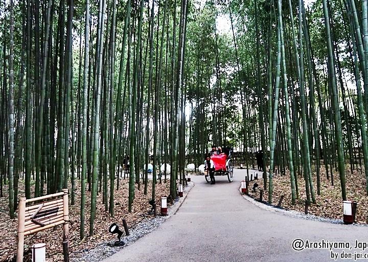 โดนใจไปญี่ปุ่น >> อาราชิยาม่า(Arashiyama) : เที่ยวตามธรรมชาติ ถ่ายรูปกับป่าไผ่ที่เกียวโต,ญี่ปุ่น